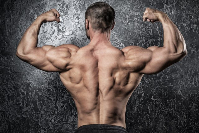 muscular well-defined back