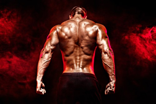 best back exercises muscular well-defined back