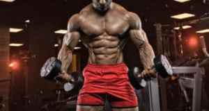 muscle building volume load