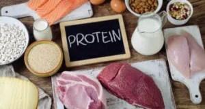 high protein rich food diet