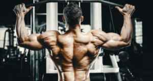 a well defined back workout