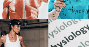 Physiology - What Role Does It Play with Your Health and Fitness?
