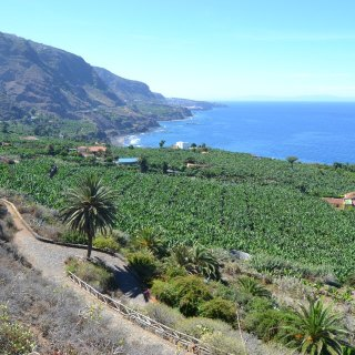 Restaurantes en Tenerife Norte | Restaurants in Northern Tenerife | Ristoranti a Tenerife Nord