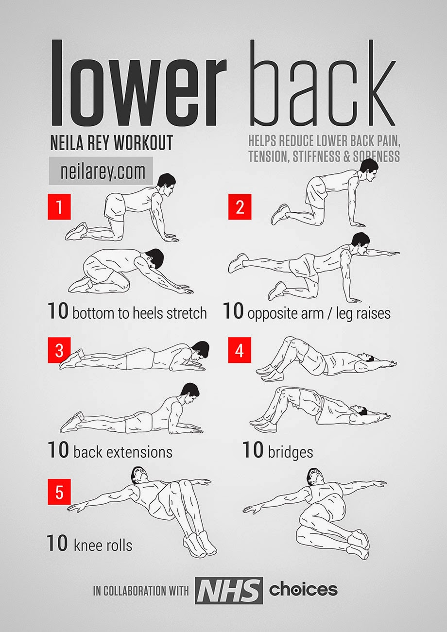 best lower back stretches tfe times