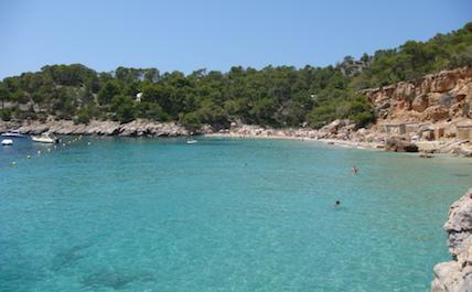 Ibiza trees
