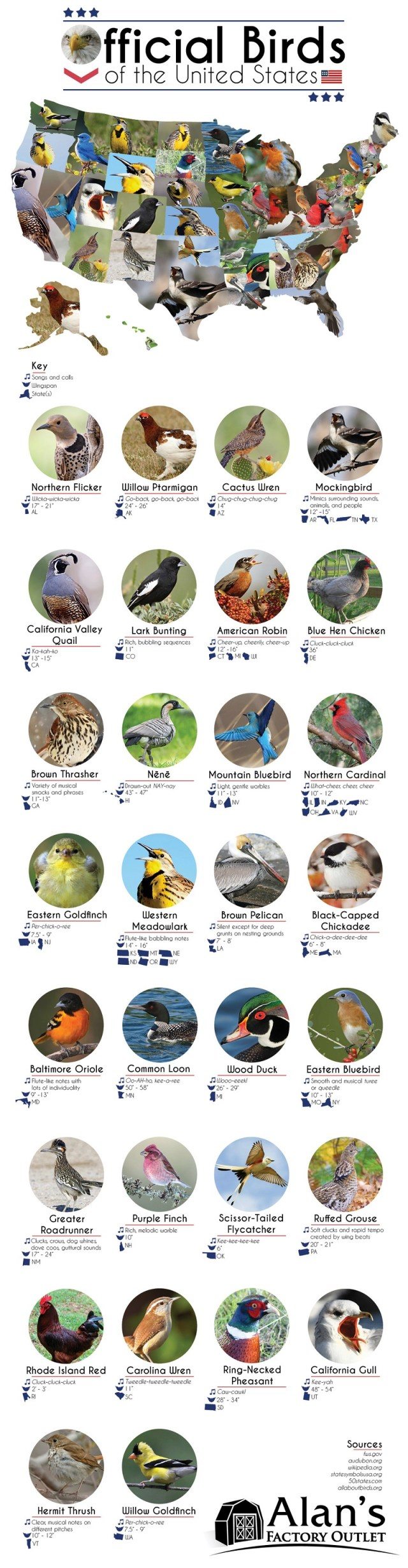 Official Birds of the United States