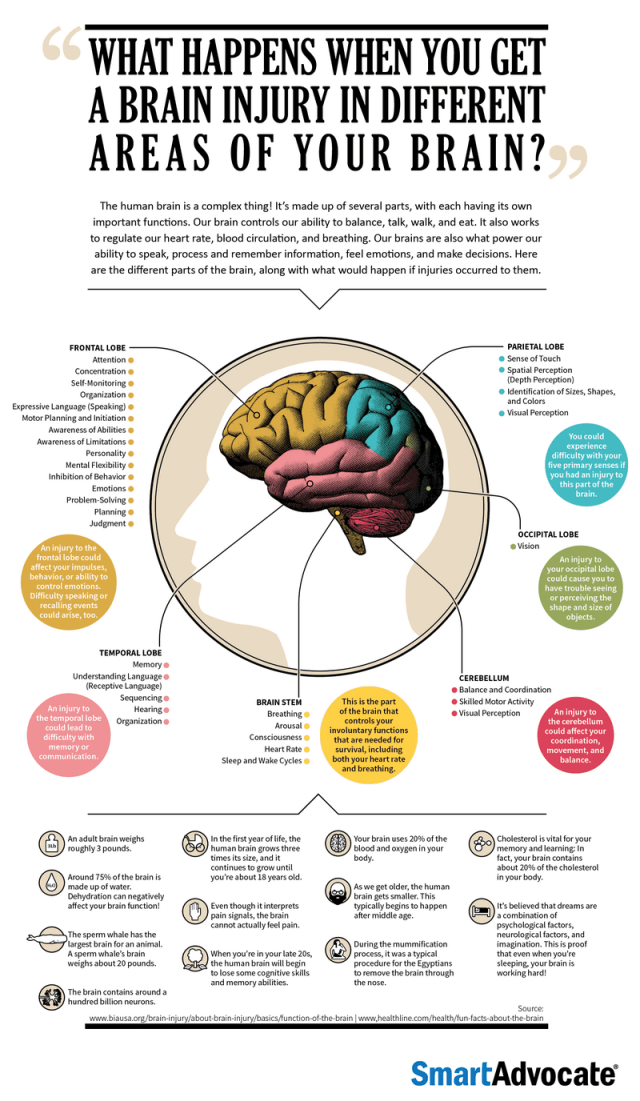 What Happens When You Get A Brain Injury In Different Areas Of Your Brain