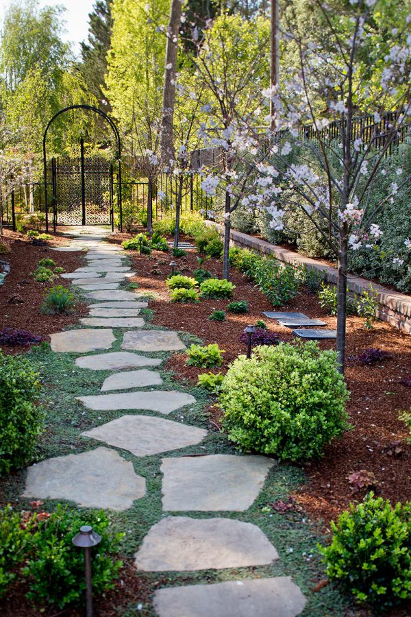 plants stepping stone paths