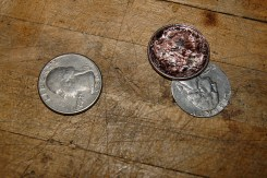 two headed quarter | tonyfrentrop.com