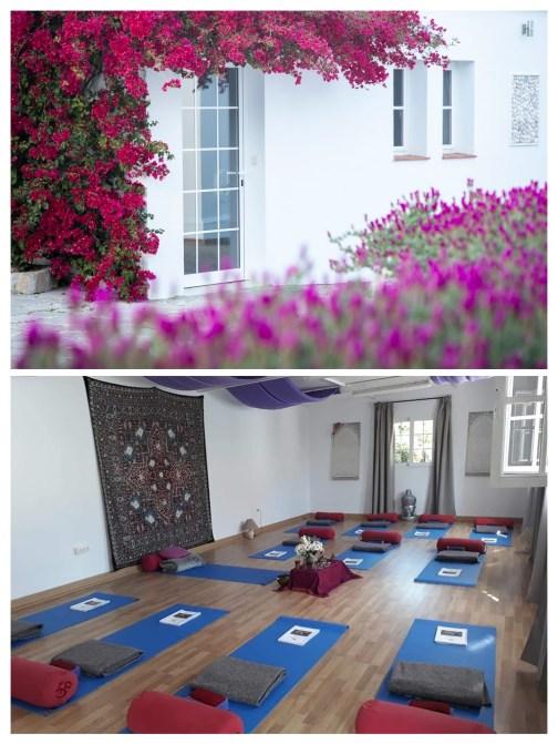 TFSR Web Yoga Studio 1
