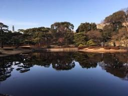 at Ninomaru Park_2