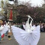 Lovely Spring Sunday in Asakusa       (April 14 Asakusa tour report)
