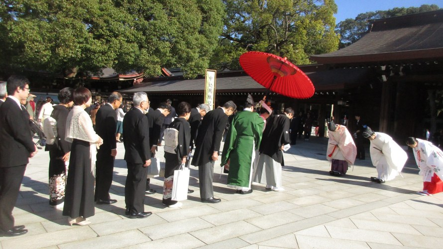 Shichi-Go-San, chrysanthemum and wedding at Meiji Shrine (November 17)