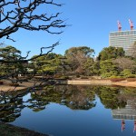 Tour Report on Jan. 11, 2020 (The East Garden of the Imperial Palace)