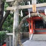 Tokyo Now #6: Nagoshi no Ooharae (mid year Shinto ritual  )