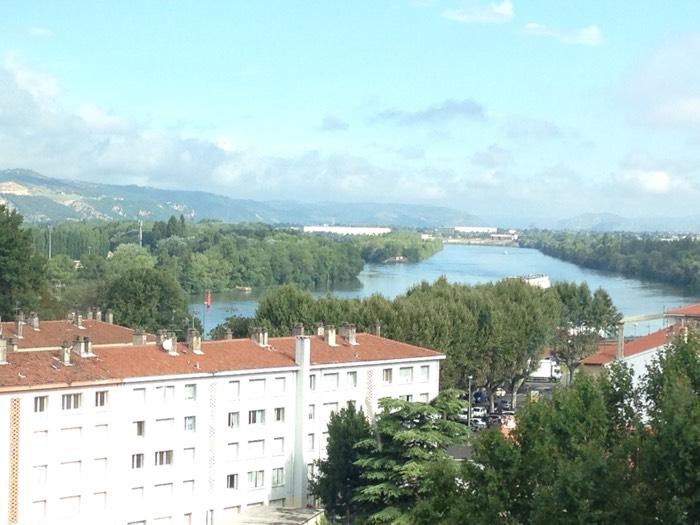 美術館から見たローヌ川。