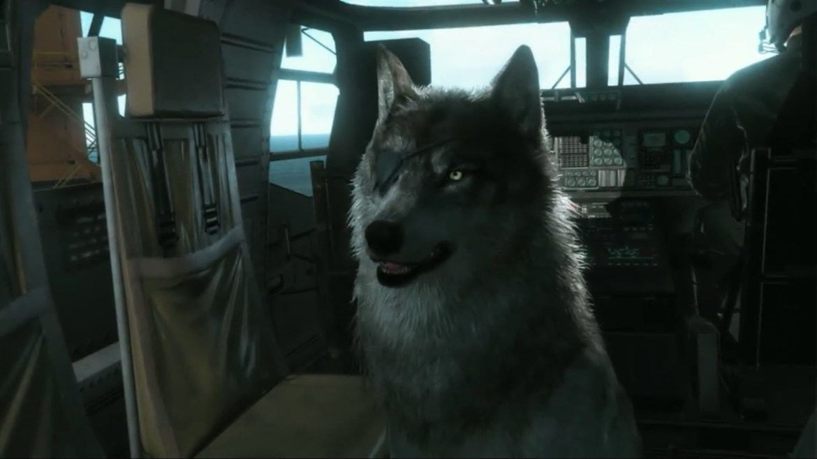 D Dog de Metal Gear Solid V