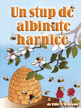 Un stup de albinuţe harnice (A Hive of Busy Bees)