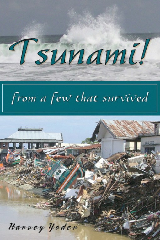 Tsunami! from a few that survived