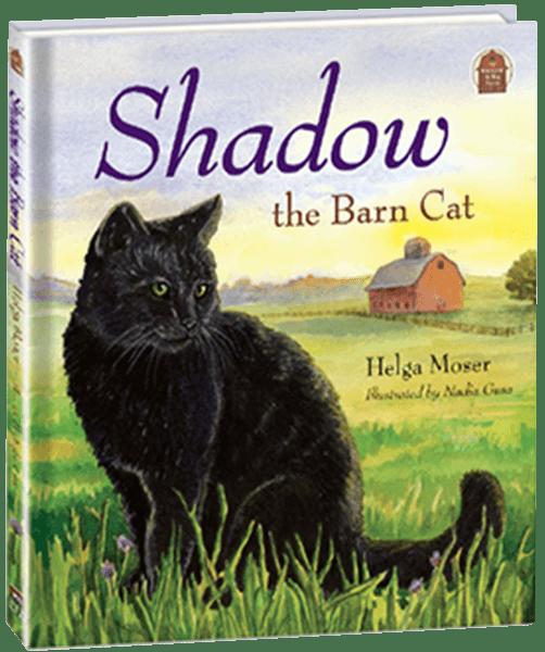 Shadow the Barn Cat
