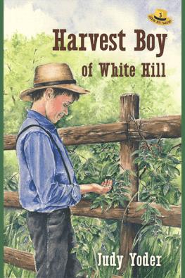 Harvest Boy of White Hill