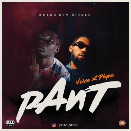 Voice ft. Phyno – Pant