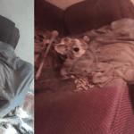 Pastor Arrested After Human Skeleton Was Found In House (Watch Video)