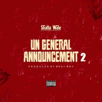 shatta-wale-–-un-announcement-tgtrends_com_ng