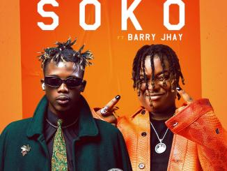 dj-lawy-ft-barry-jhay-soko-tgtrends_com_ng