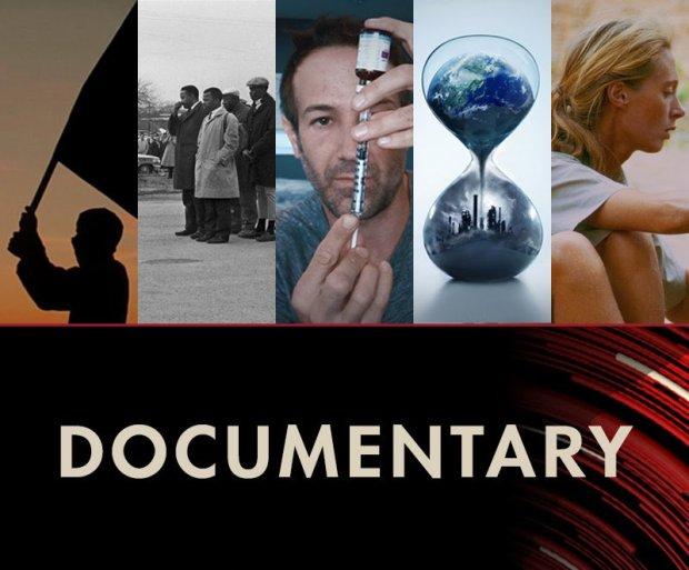 documentary1771465978.jpg
