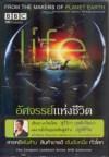 Boomerang Life /อัศจรรย์แห่งชีวิต 5 Discs (ฉบับพิเศษ!)