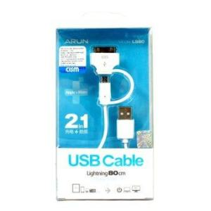 ARUN USB Cable LS80 80cm for iPhone4 (White)