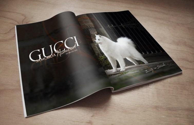 Propaganda especializada revista Gucci - Samoieda