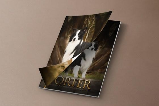 Imagem capa Porter CDF