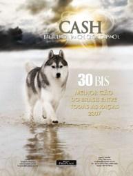 imagem propaganda melhor cão do brasil na praia