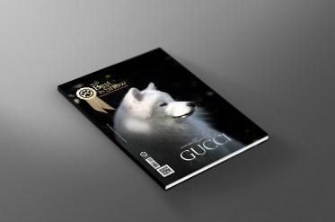 Imagem capa Gucci BIS