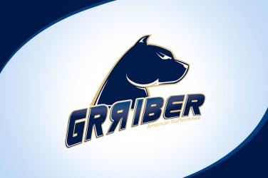 Imagem logo Grriber