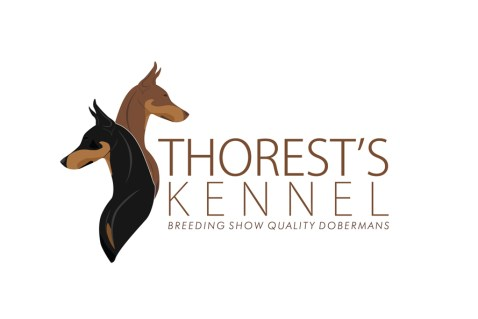 Imagem Logo Thorest Kennel Dobermans