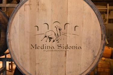 Imagem logo Dobermans Medina Sidonia