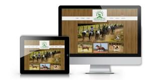IMAGEM site responsivo visualizado em computador e tablet