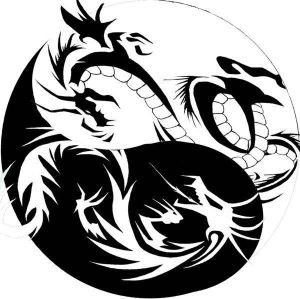 """The image """"https://i0.wp.com/th04.deviantart.net/fs40/300W/f/2009/042/b/f/dragon_yin_yang_tribal_tattoo_by_xisangelraine.jpg"""" cannot be displayed, because it contains errors."""
