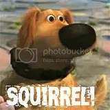 Doug the Dog -- SQUIRREL!