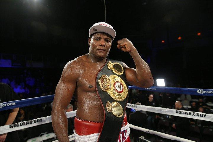 Image result for luis ortiz boxer