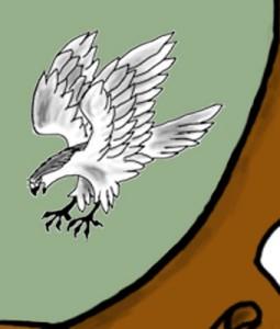 Marn Hawk