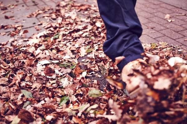 fashion-menswear-thaeger-leaf-autumn