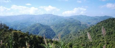 Sanfte, grüne Hügel bei Doi Mae Salong, Nordthailand