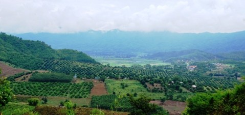 Tal von Thaton, nahe dem Tee-Anbaugebiet Doi Wawee, Nordthailand
