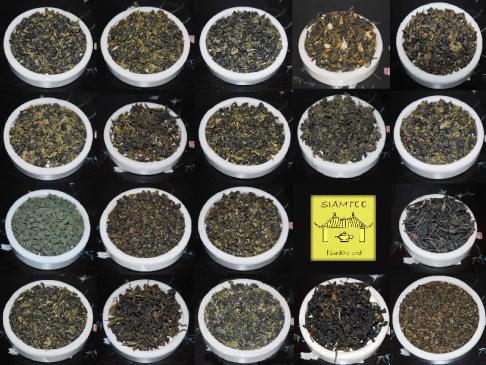 Tee-Anbau in Nordthailand