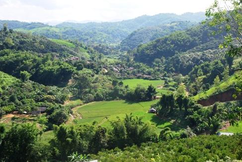 """""""Tee-Dorf"""" Ban Si Phan Rai, DoiTung, Nordthailand"""