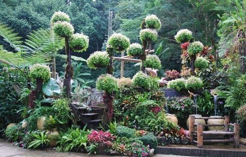 Skulptur aus Grünpflanzen und Blumen im Royal Flower Garden, Doi Tung